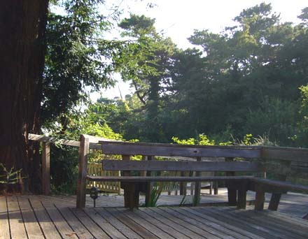 Deck at St Columba